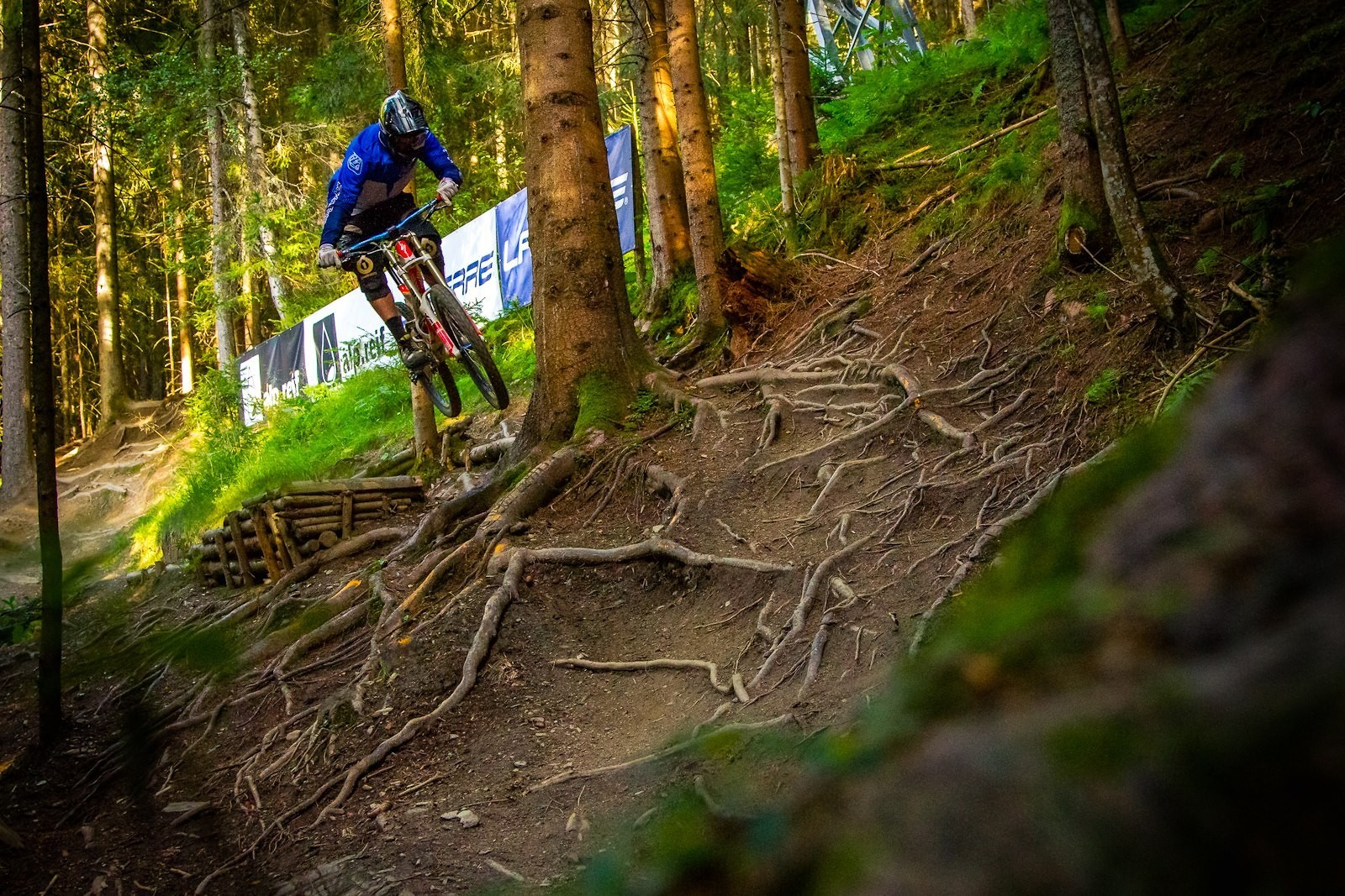 Root Gap - onenerdykid* - Mountain Biking Pictures - Vital MTB