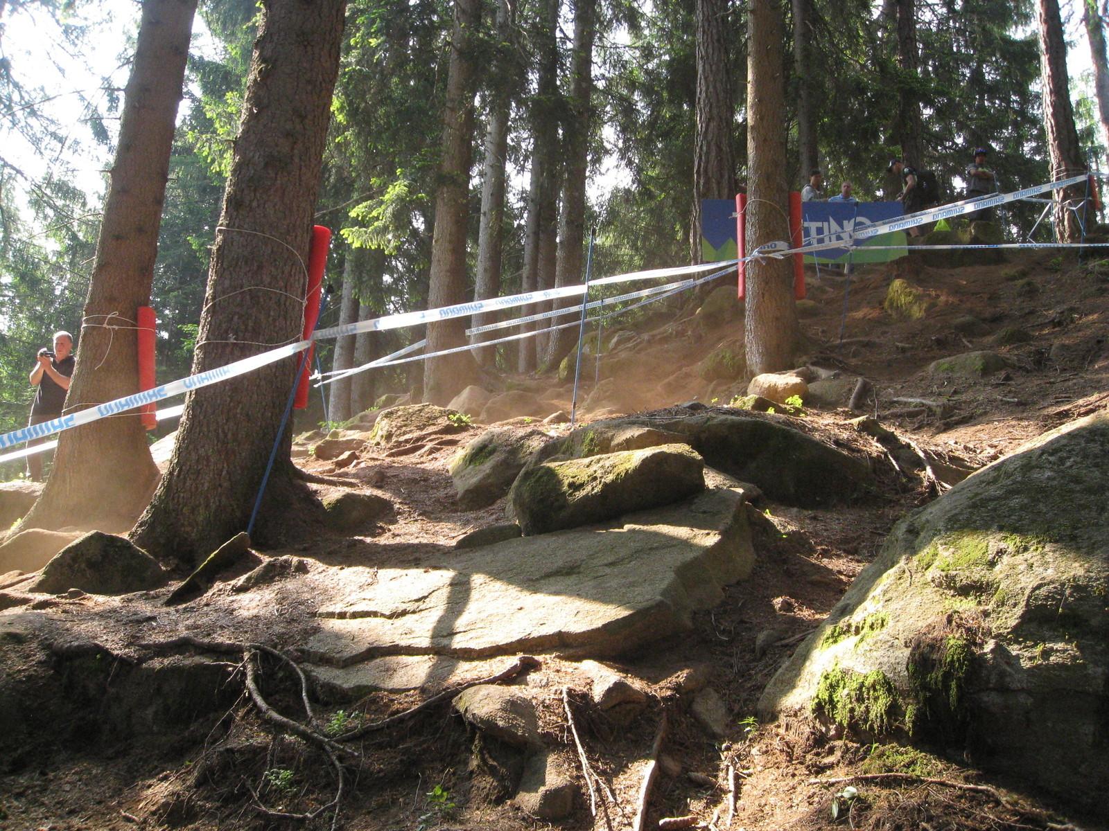 Upper section gnar - onenerdykid* - Mountain Biking Pictures - Vital MTB
