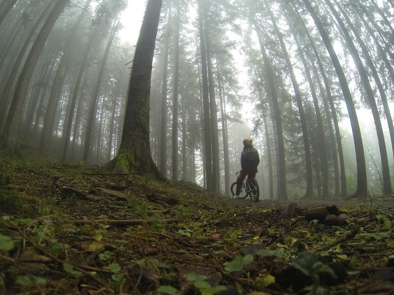 foggy day - Nonotherthanclaus - Mountain Biking Pictures - Vital MTB