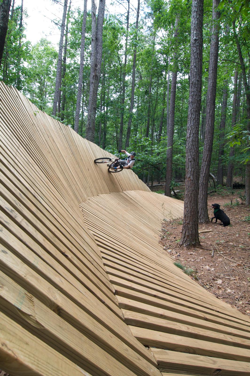 DSC 0399 - b-lec - Mountain Biking Pictures - Vital MTB