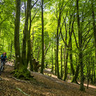 C138_basque_by_bike_mountain_bike_tours_in_the_basque_country_22