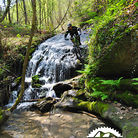 C138_basque_by_bike_cascada_the_xx