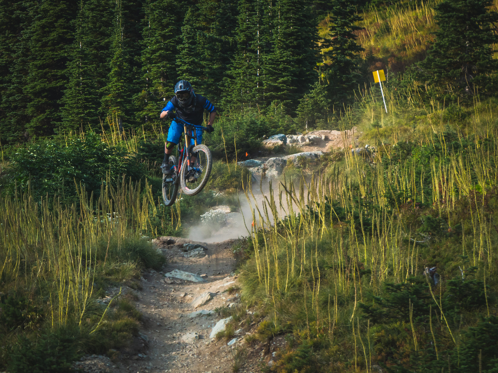 Runaway Train - marc_obrien - Mountain Biking Pictures - Vital MTB