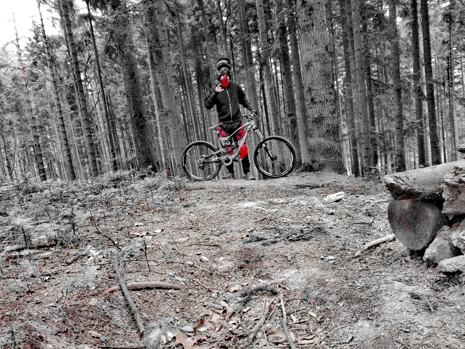 Nukeproof Scalp - Michalglowacz1 - Mountain Biking Pictures - Vital MTB