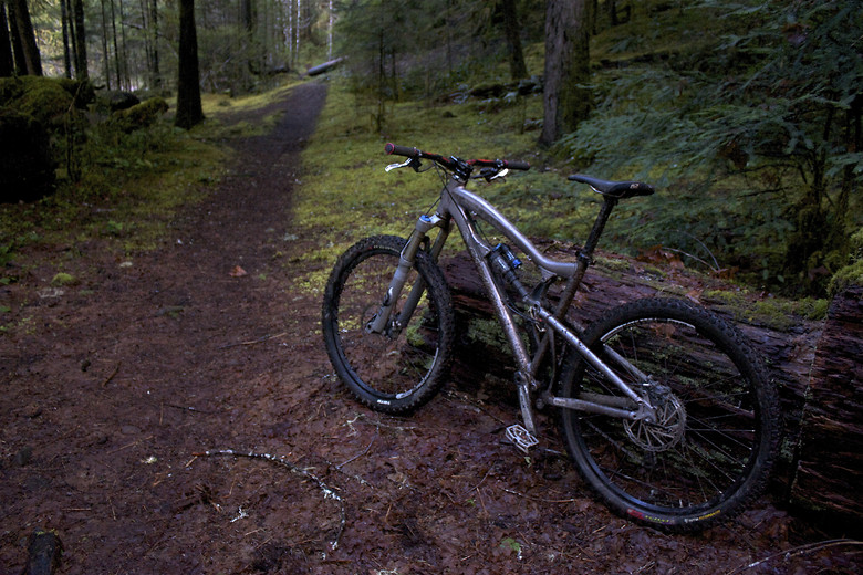 Super mellow ride up in Oakridge, OR. Dropped down the fork so i could kill it even more!