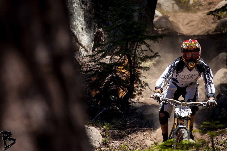 Andrew and the Tree - GnarHuck - Mountain Biking Pictures - Vital MTB