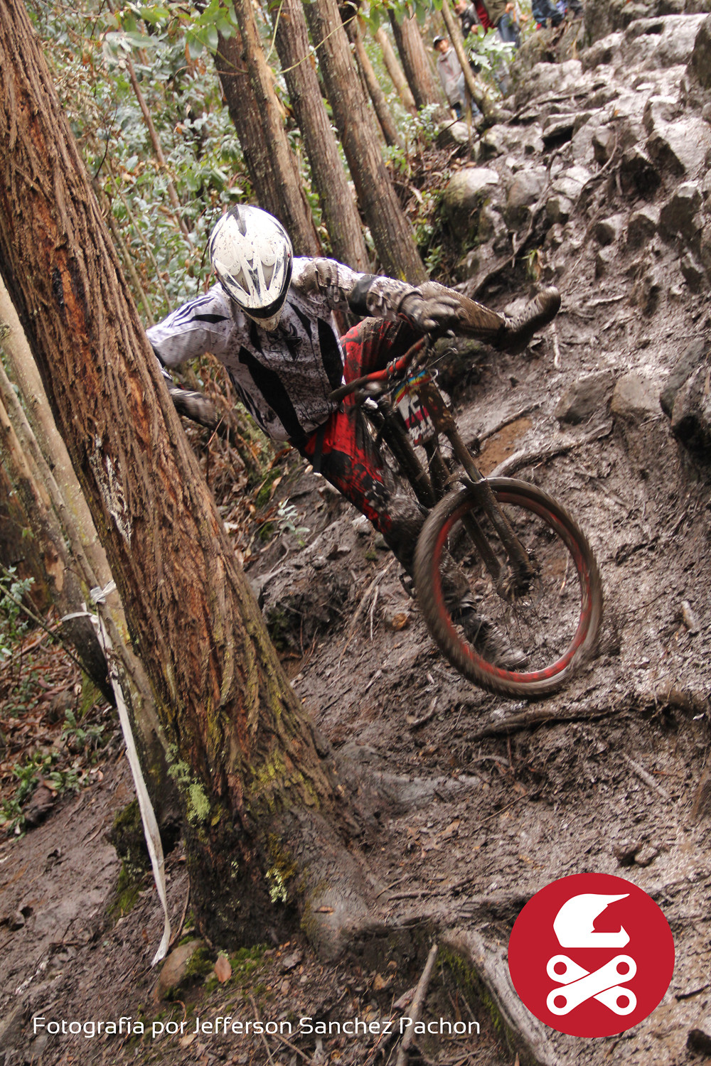 tripas - leopineda - Mountain Biking Pictures - Vital MTB