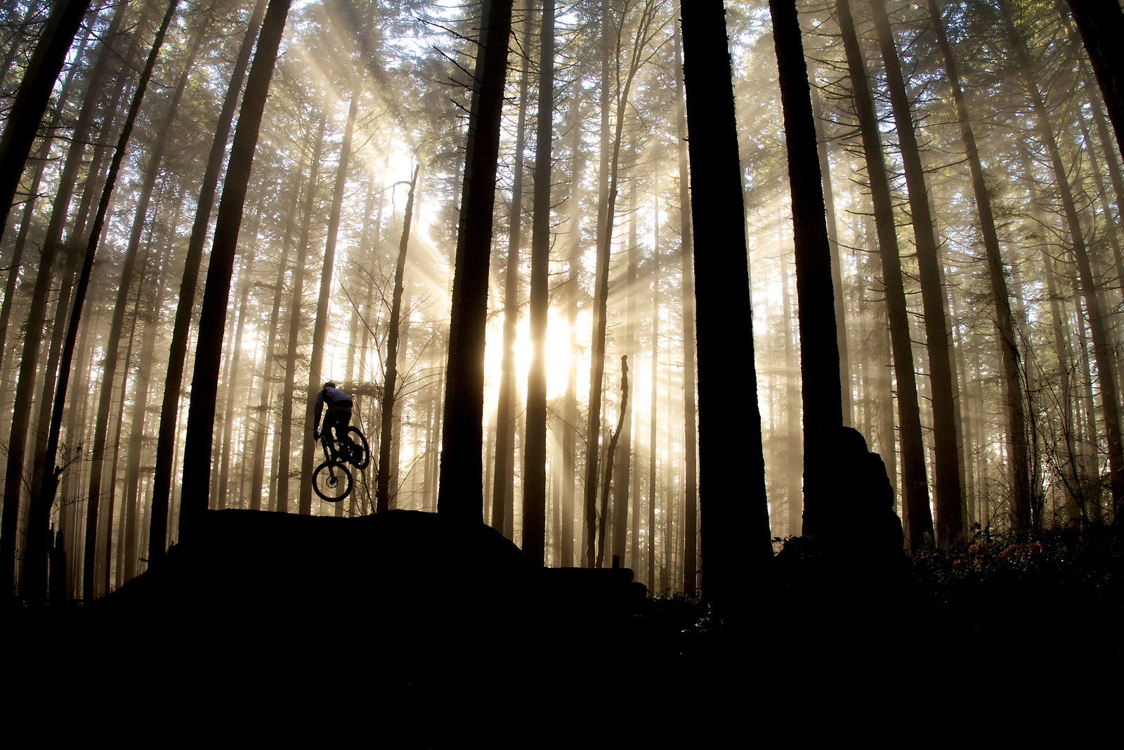 Lear Blackrock Tepper - corytepper.com - Mountain Biking Pictures - Vital MTB