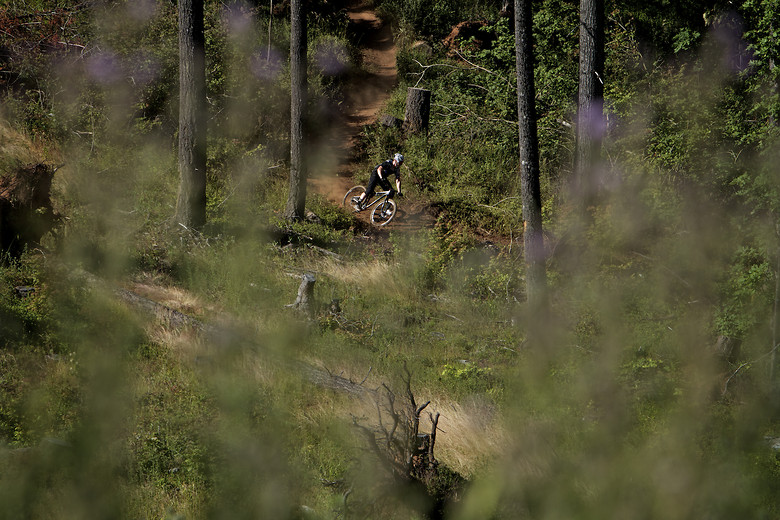 Darrin Seeds at the Oregon Enduro, Hood River - corytepper.com - Mountain Biking Pictures - Vital MTB