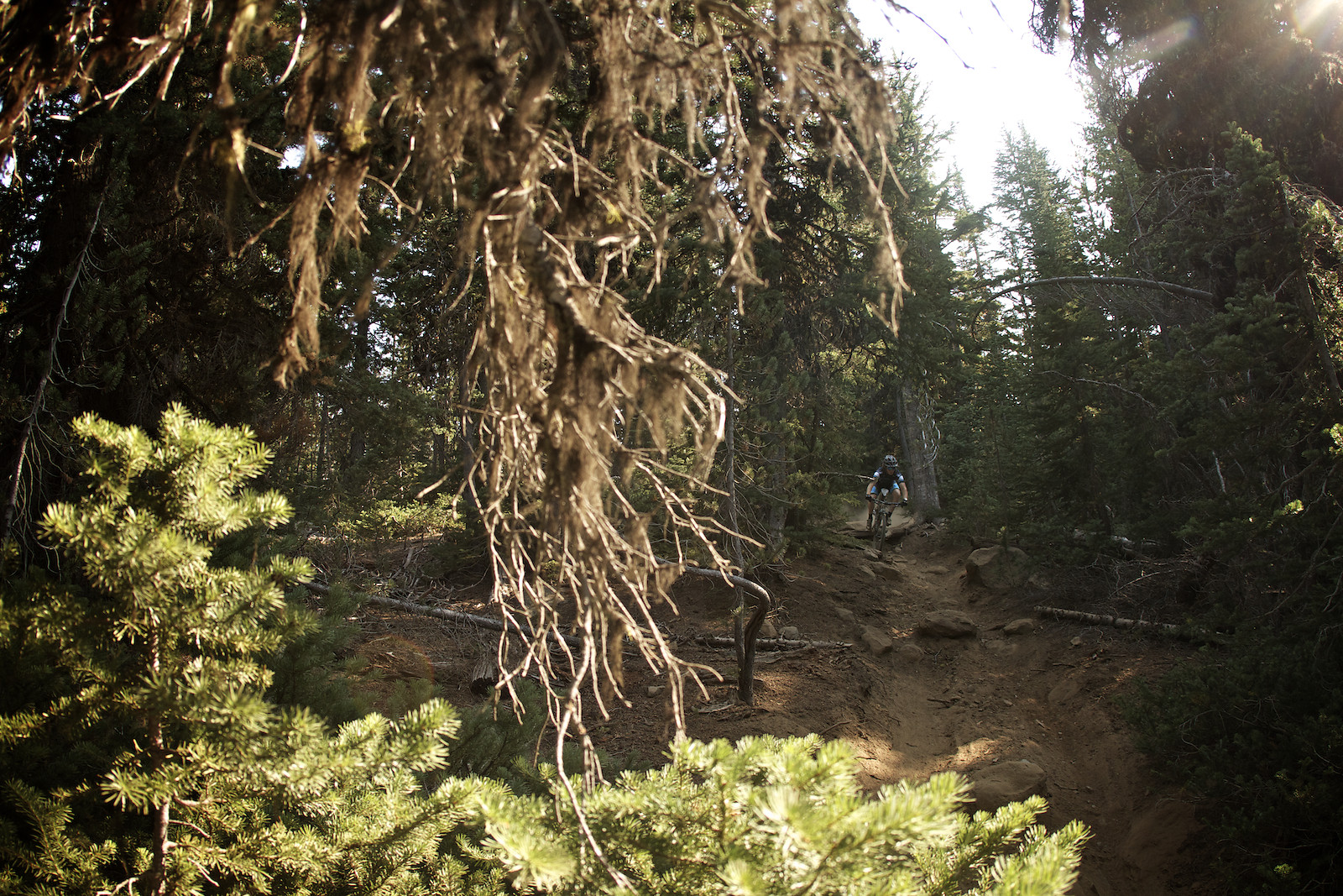 2012 Sisters Enduro Droppin In - corytepper.com - Mountain Biking Pictures - Vital MTB