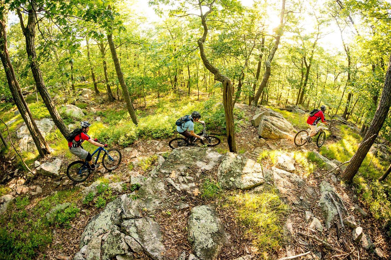 Bombers - jparker - Mountain Biking Pictures - Vital MTB