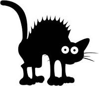 S200x600_scaredy_cat