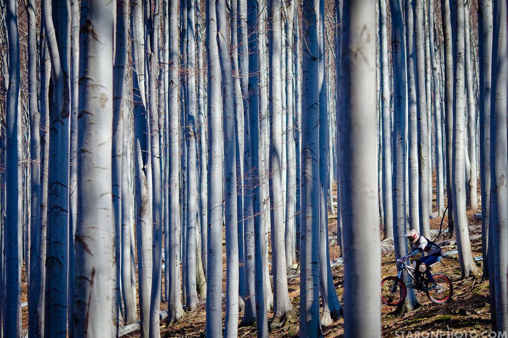 Marcel Ns Bikes Soda   - Piotr_Staroń - Mountain Biking Pictures - Vital MTB