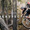 Shift in Perception