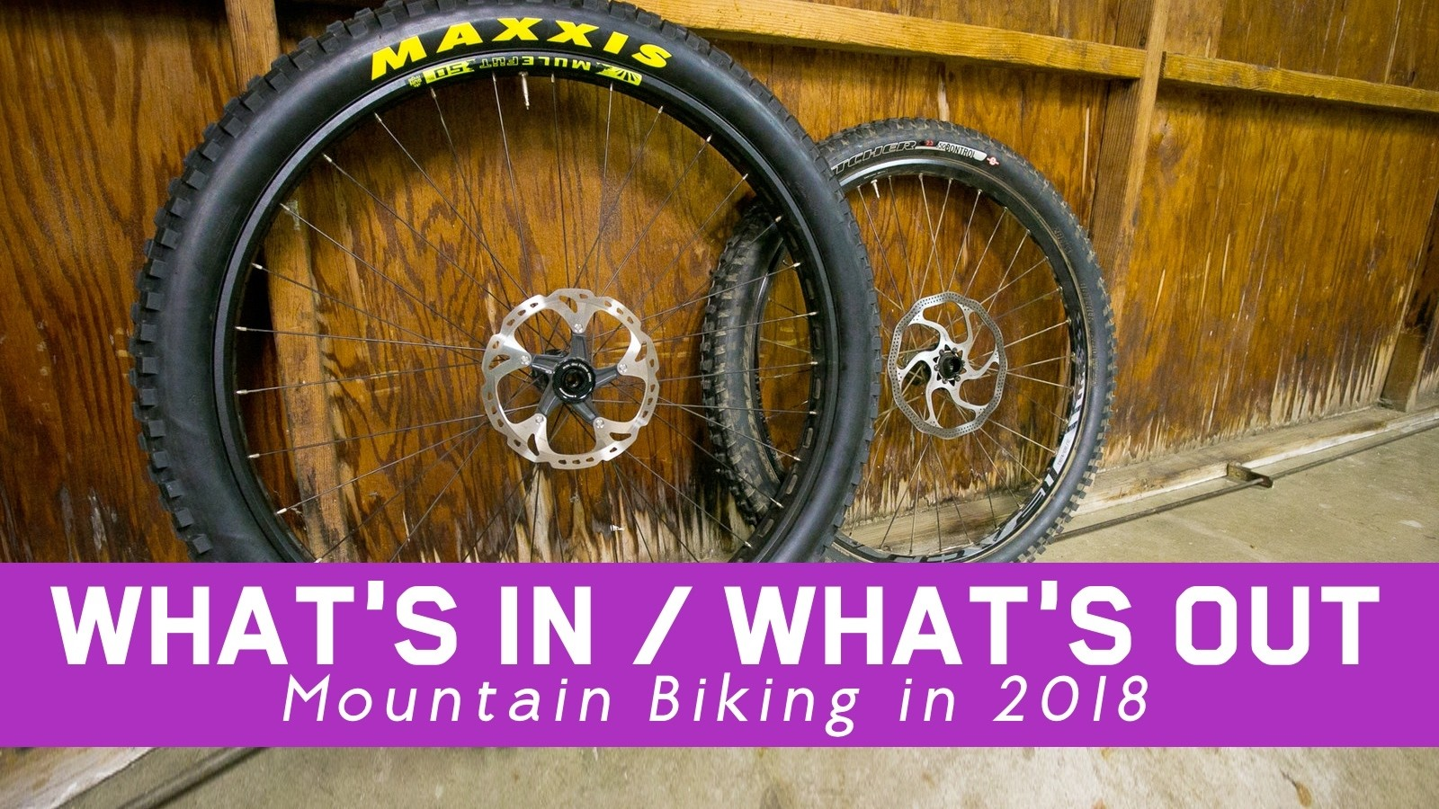 What's In / What's Out - Mountain Biking, 2018