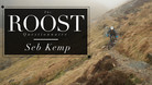 The ROOST Questionnaire #3, Seb Kemp
