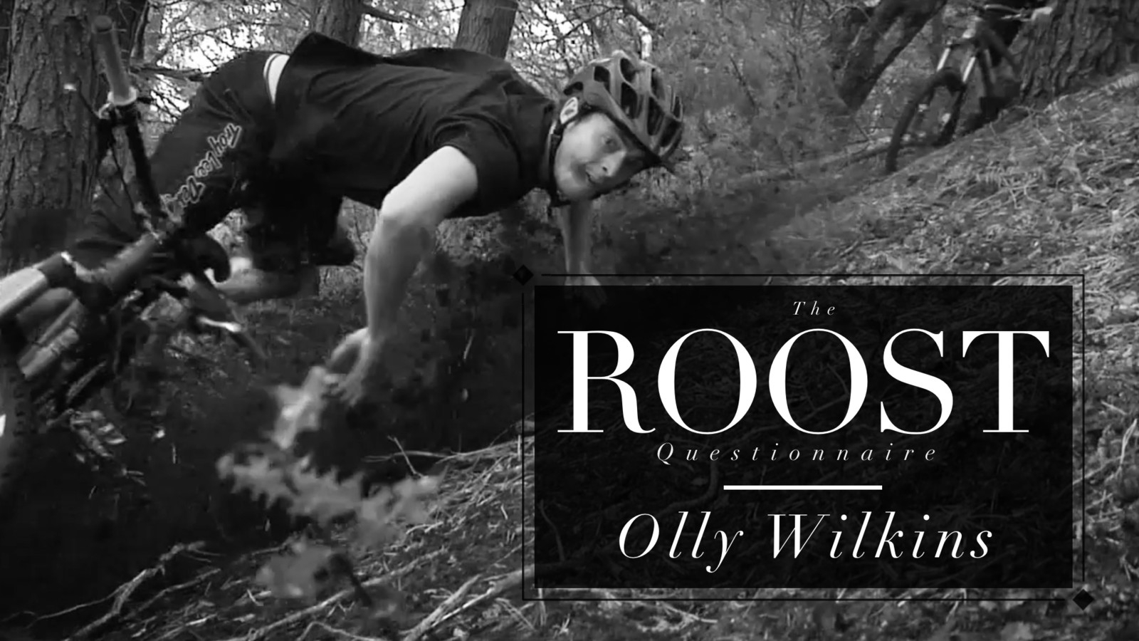 The ROOST Questionnaire #7, Olly Wilkins