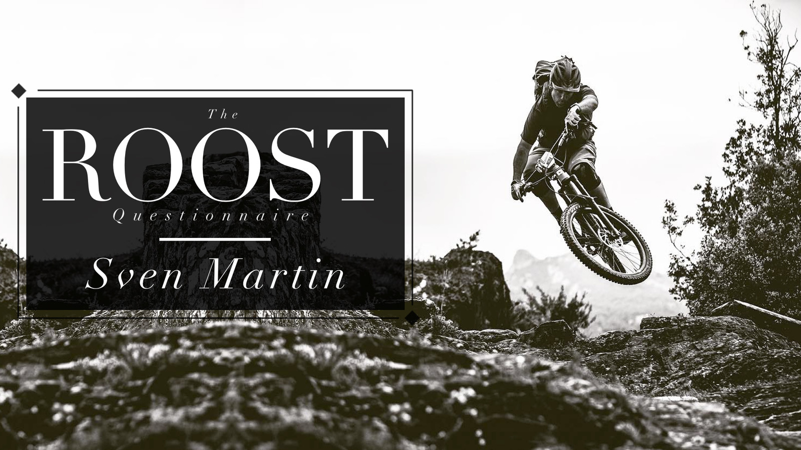 The ROOST Questionnaire #9, Sven Martin