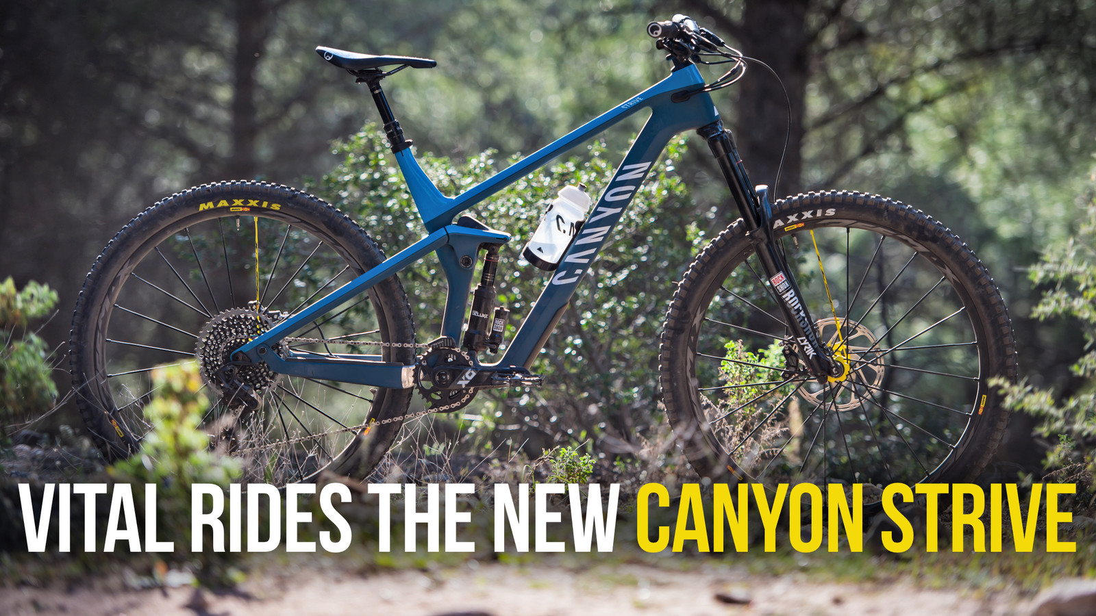 Vital Rides the All-New Canyon Strive 29 - Mountain Bikes