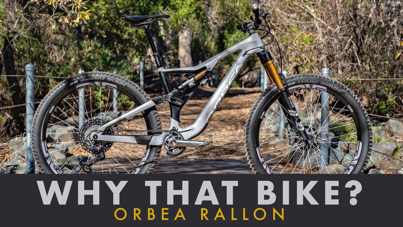 Why That Bike? | Orbea Rallon