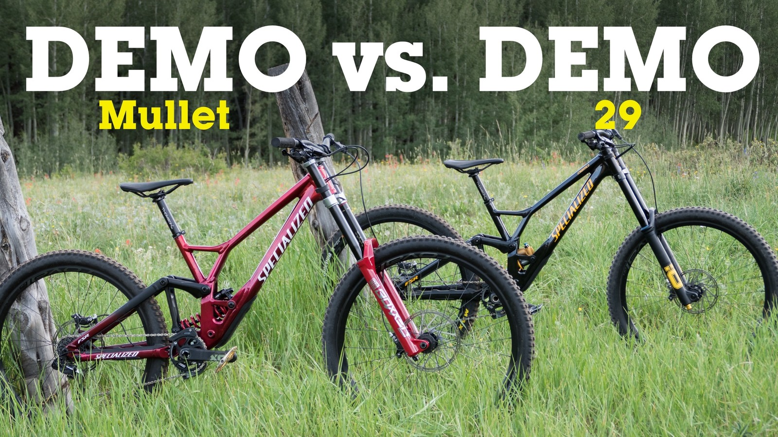 Demo Mullet vs Demo 29: Specialized DH Bikes Head-to-Head