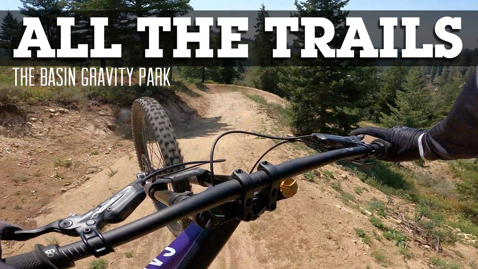 ALL THE TRAILS - The Basin Gravity Park