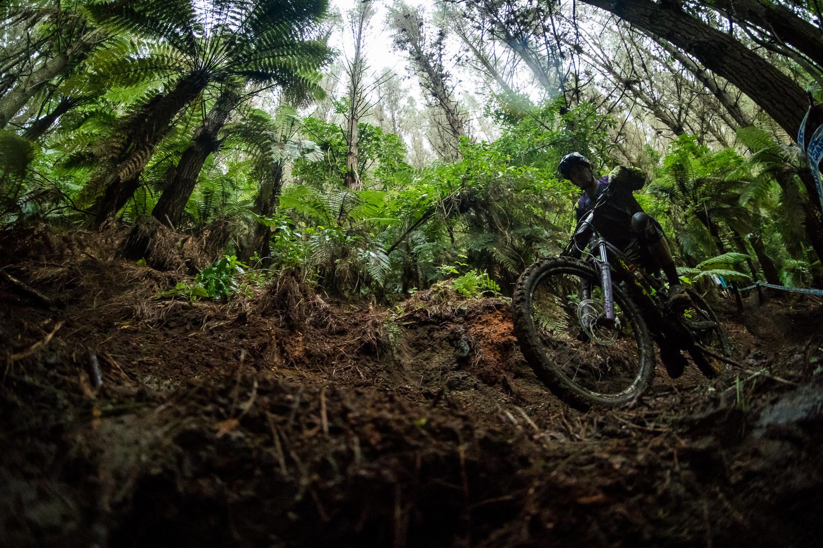 Rotorua Mud Fest