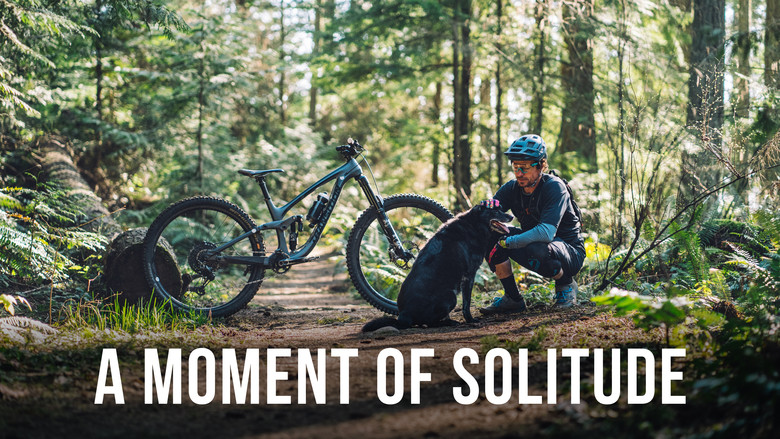A Moment of Solitude with Transition Bikes