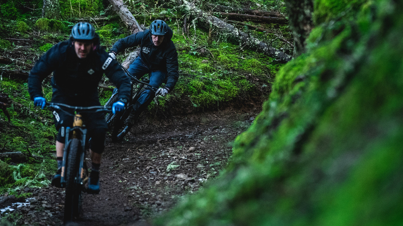When Winter Has the Trails Buried, Transition Bikes Head Across the Bay