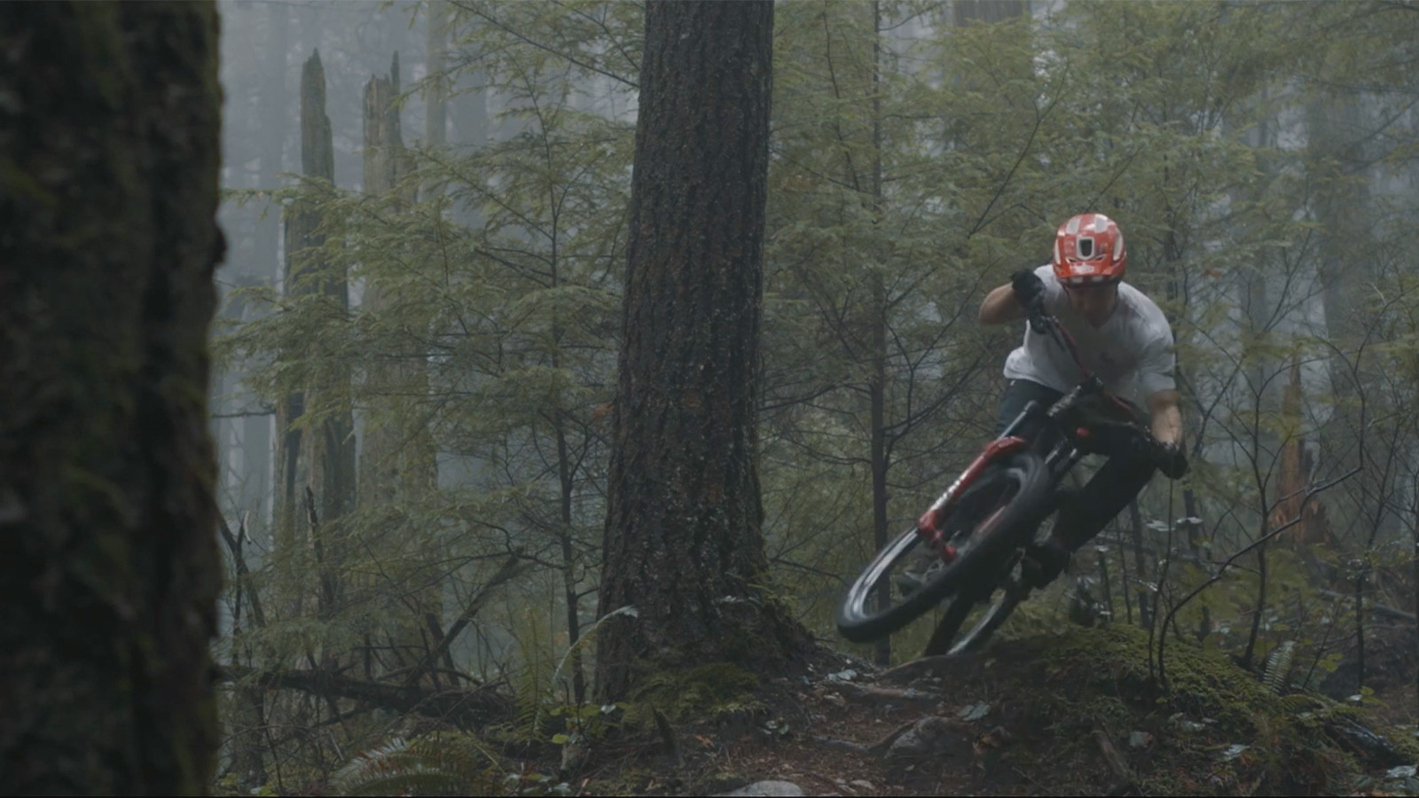 Flying Through the Misty Forest with Caleb Holonko in How it Is