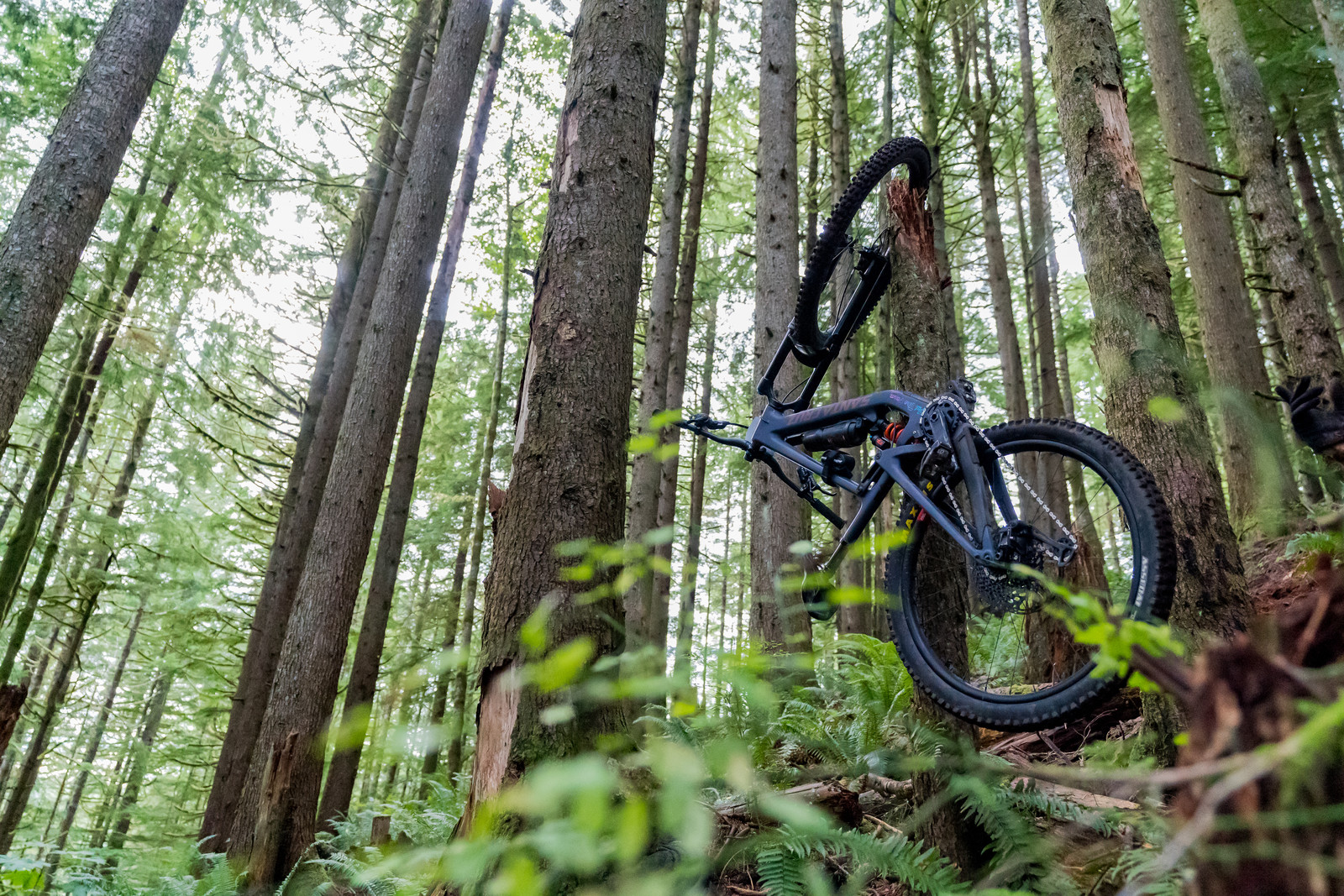 2021 Cascadia Dirt Cup #4, Capitol Forest, WA
