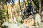 Dainese and Canyon Factory Racing Together for the 2018 and 2019 Seasons