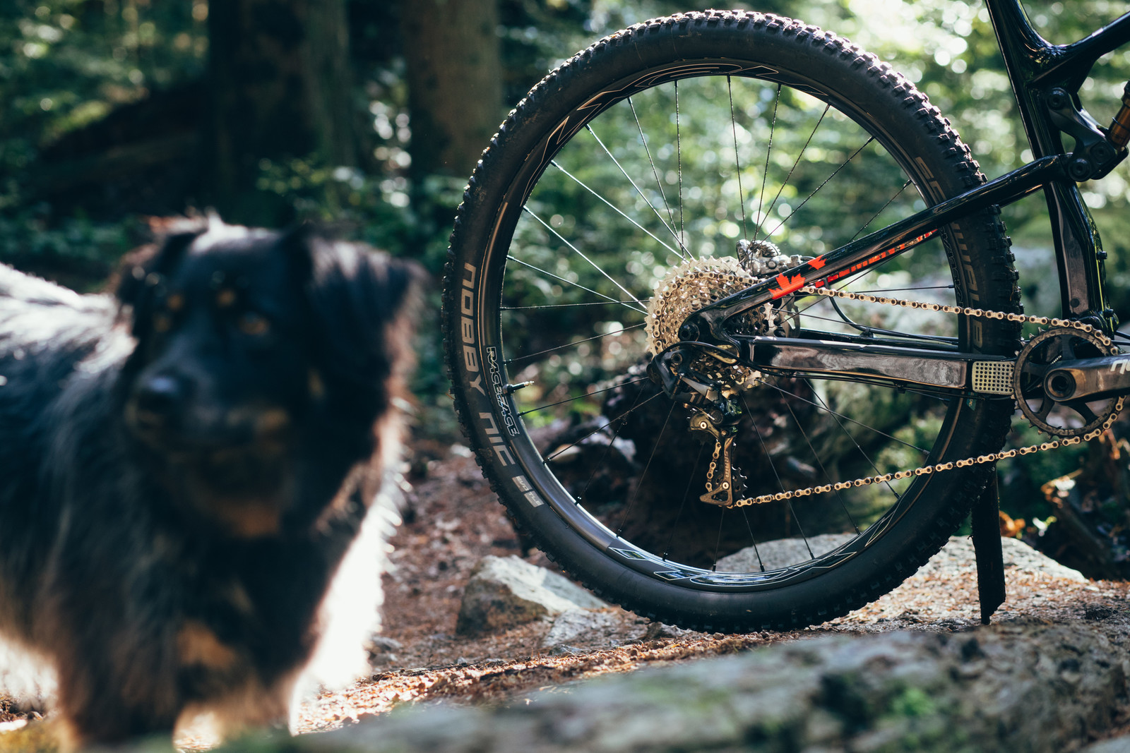 1550g, 29-inch Diameter and 26mm Internal Width - Race Face Next SL Carbon Wheels