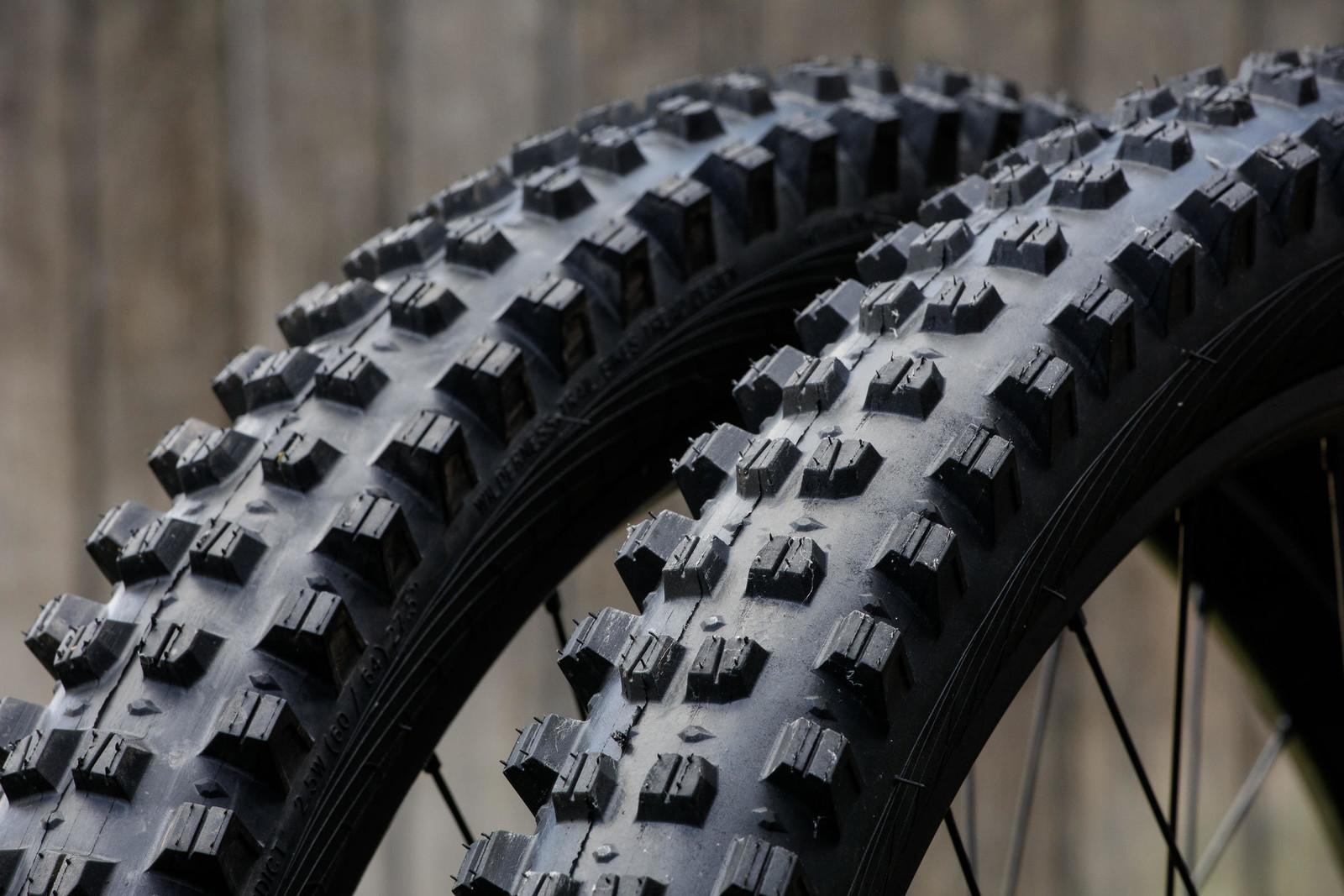 Tallest Knobs We've Ever Seen? WTB's New Verdict and Verdict Wet Tires