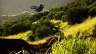 Return to Earth   A Mountain Bike Movie by Anthill Films