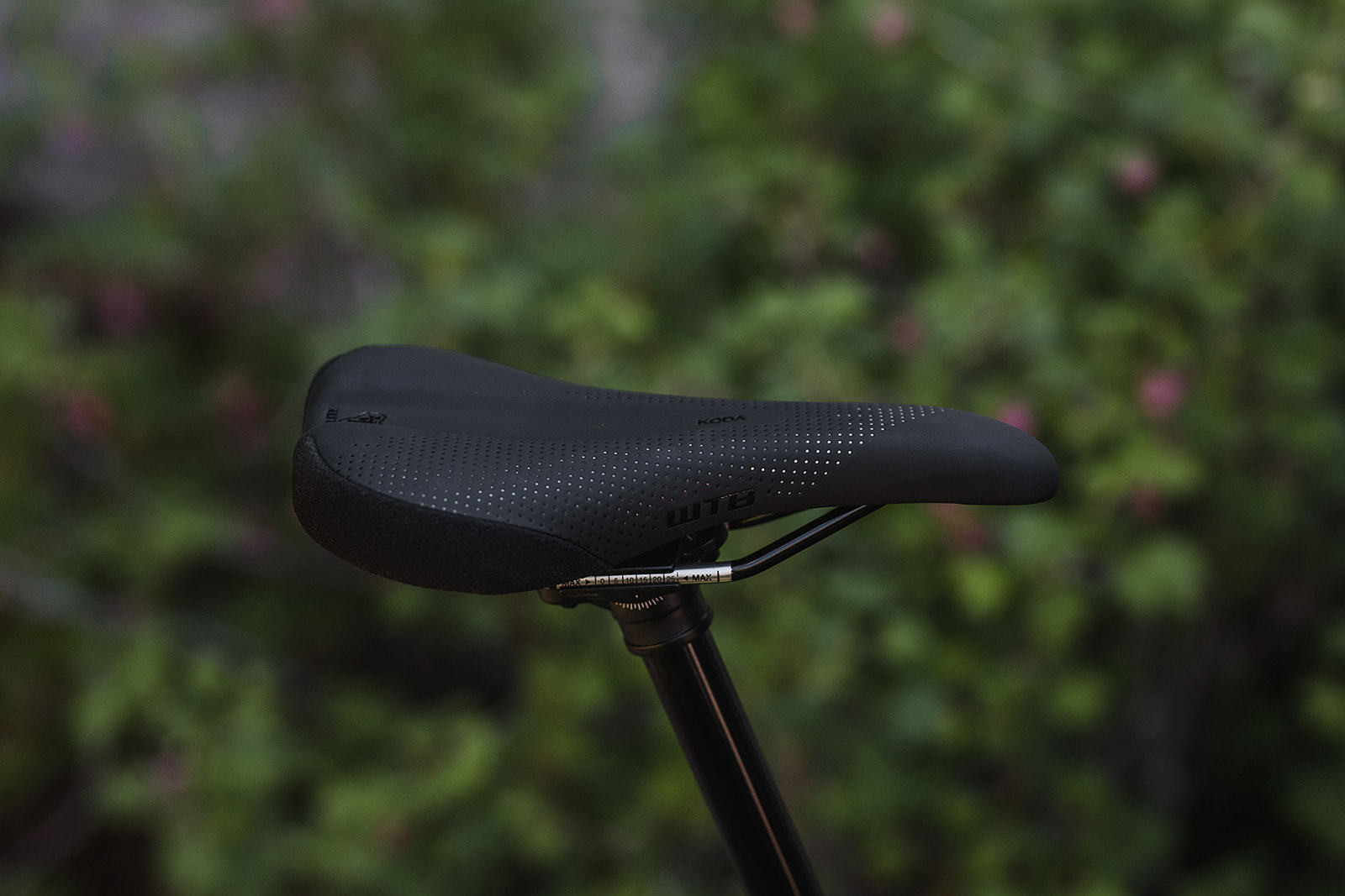 WTB Launches Updated Saddle Line and Fit System