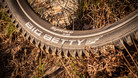 Five New Constructions, a Revised Nobby Nic, and the Big Betty Returns - Schwalbe's Updated Line