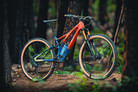Win This Custom Specialized Stumpjumper and Help Restore Trails in Colorado