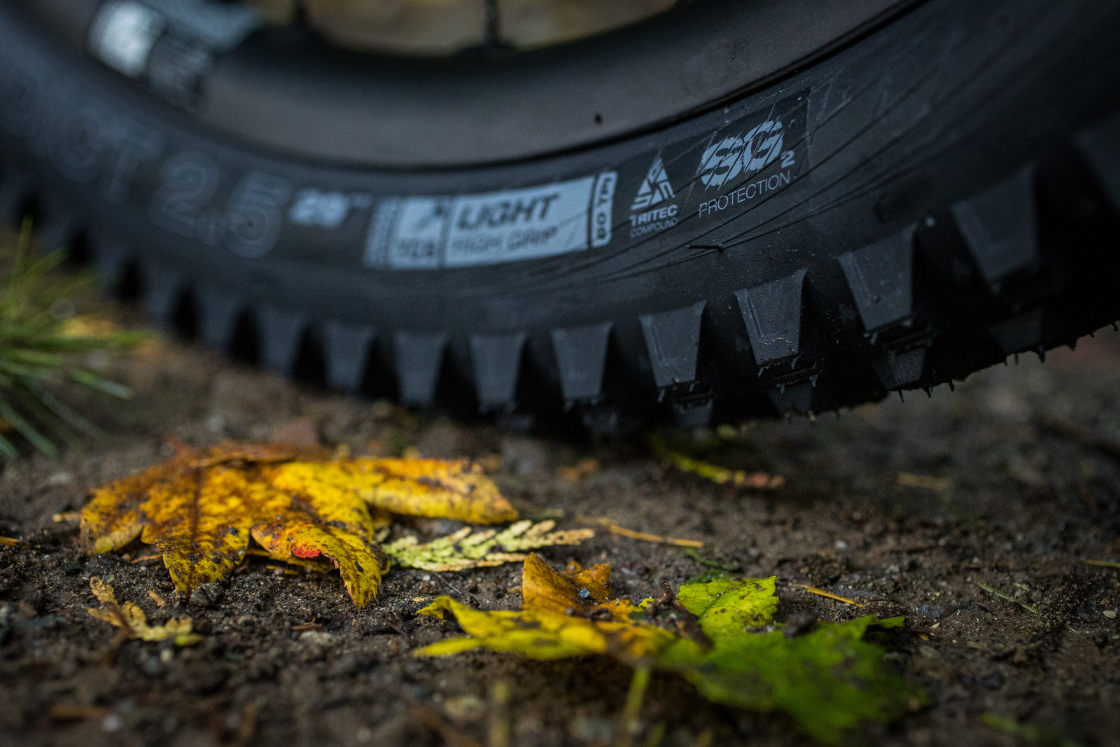 WTB Updates Tire Line with SG2 Puncture Protection