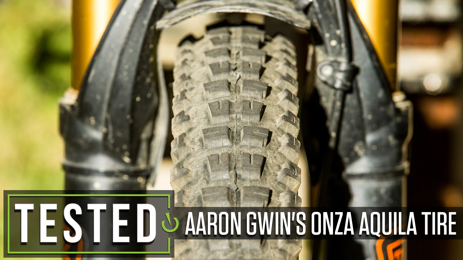 Tested: Aaron Gwin's Signature Series Onza Aquila Tire