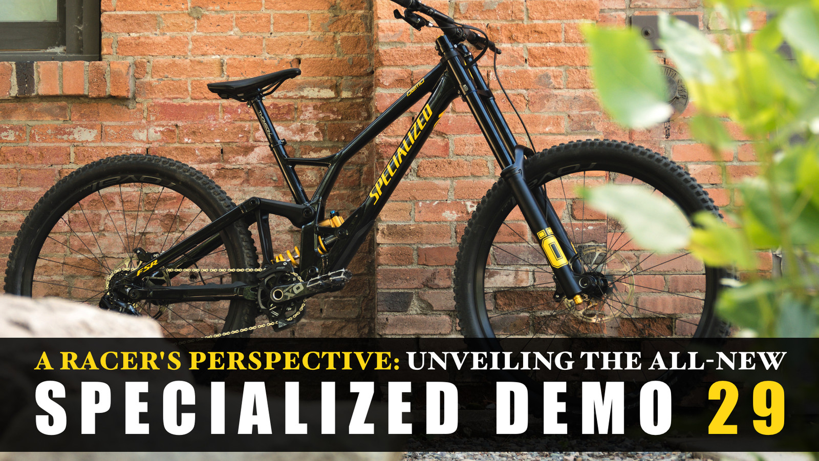 A DH Racer's Perspective: Unveiling the 2020 Specialized Demo 29