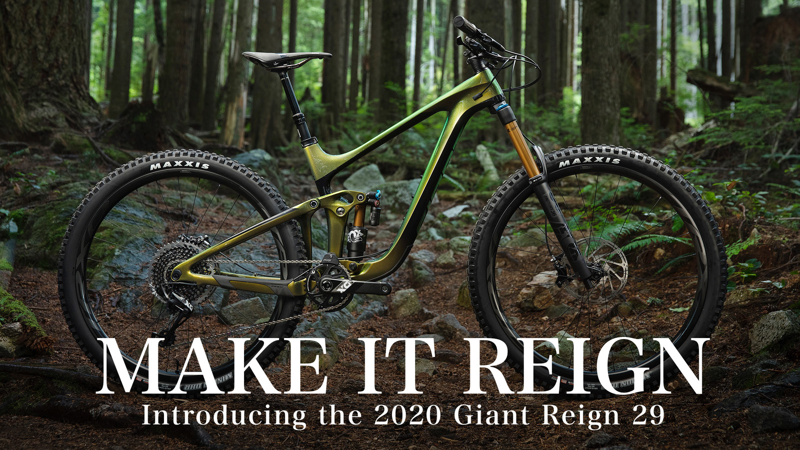 Make it Reign: Introducing the 2020 Giant Reign 29
