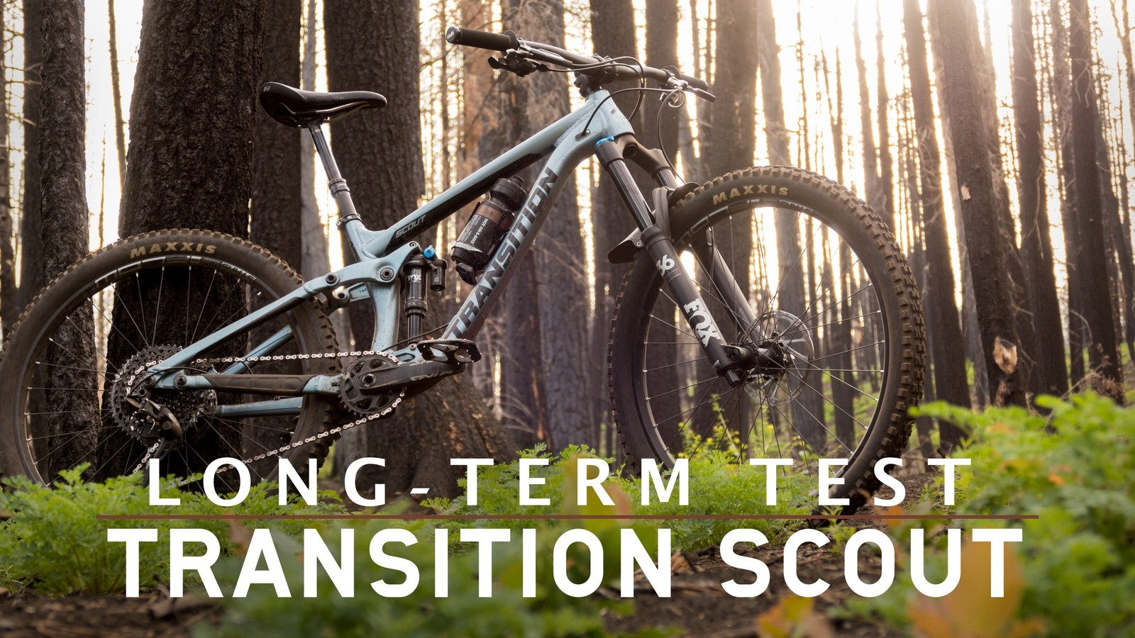 Long-Term Test: Transition Scout