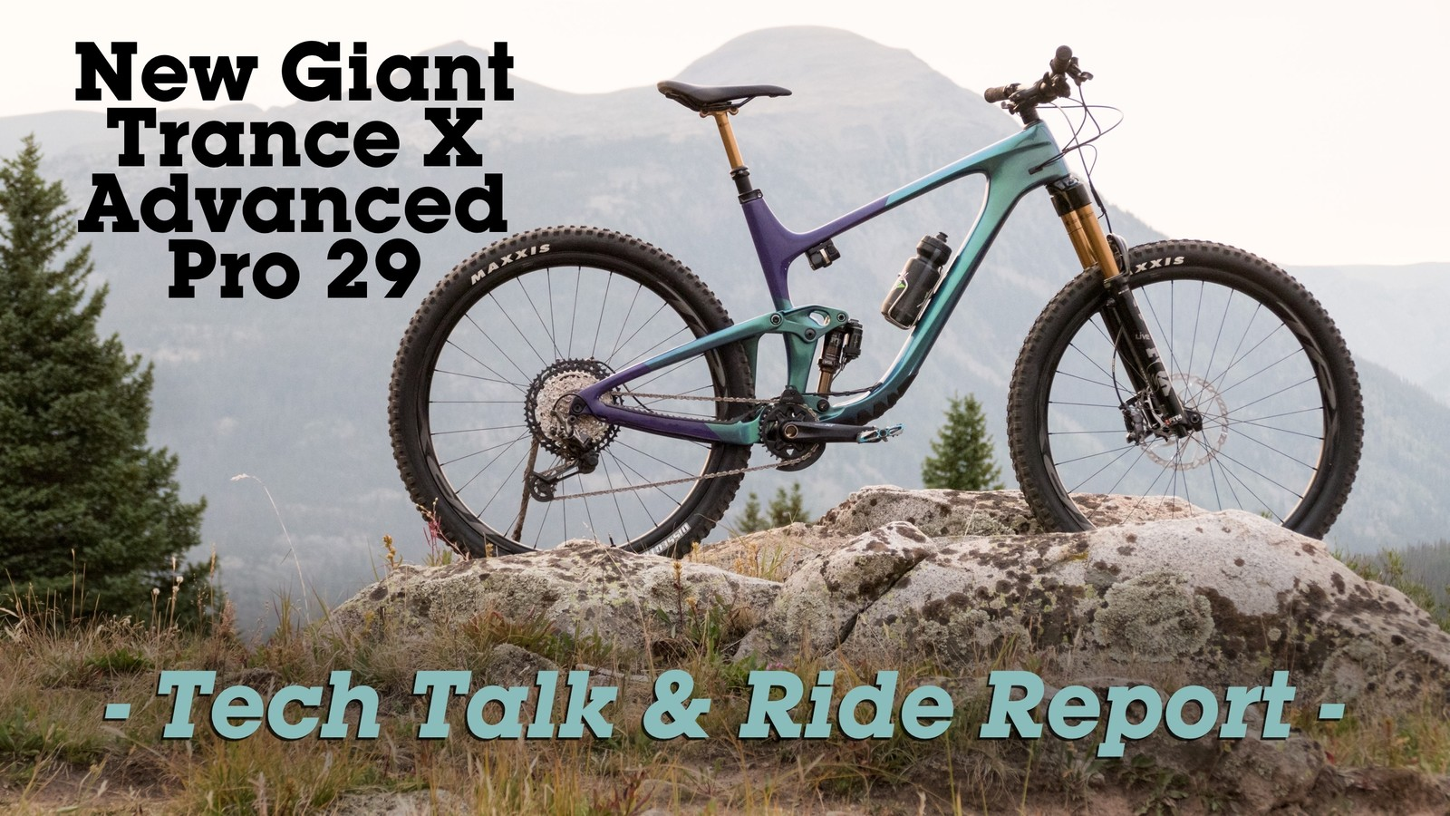 Love in the Time of COVID-19? An All-New Giant Trance X Advanced Pro 29 Texts You Late Night