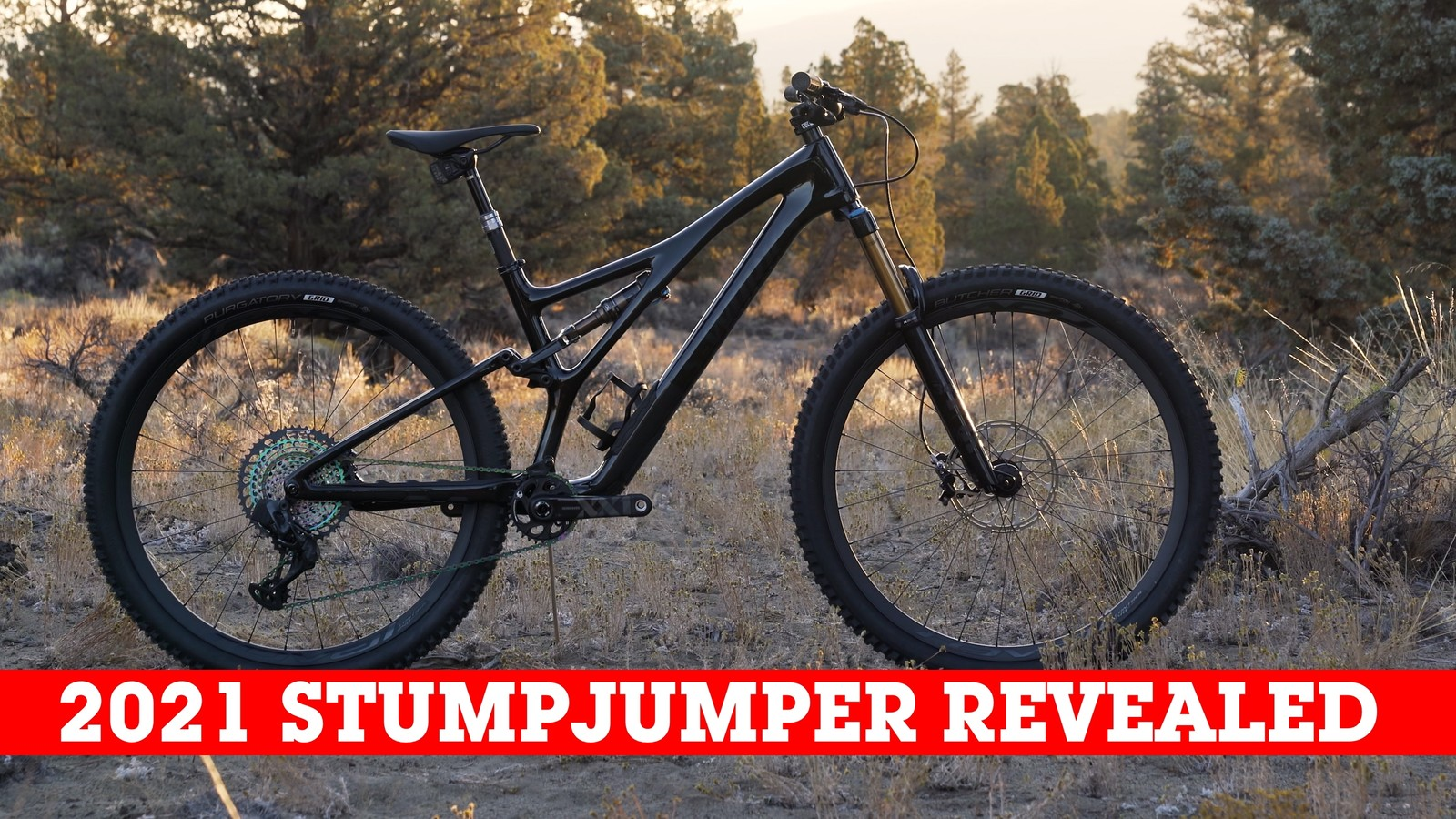 Is This the Benchmark Trail Bike? The All-New Specialized Stumpjumper Line