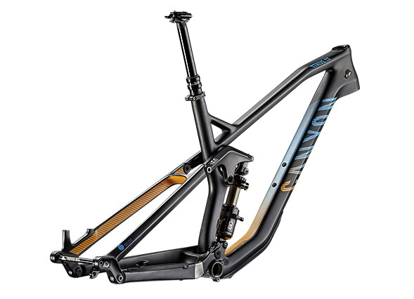 Canyon Strive CF Race Frame