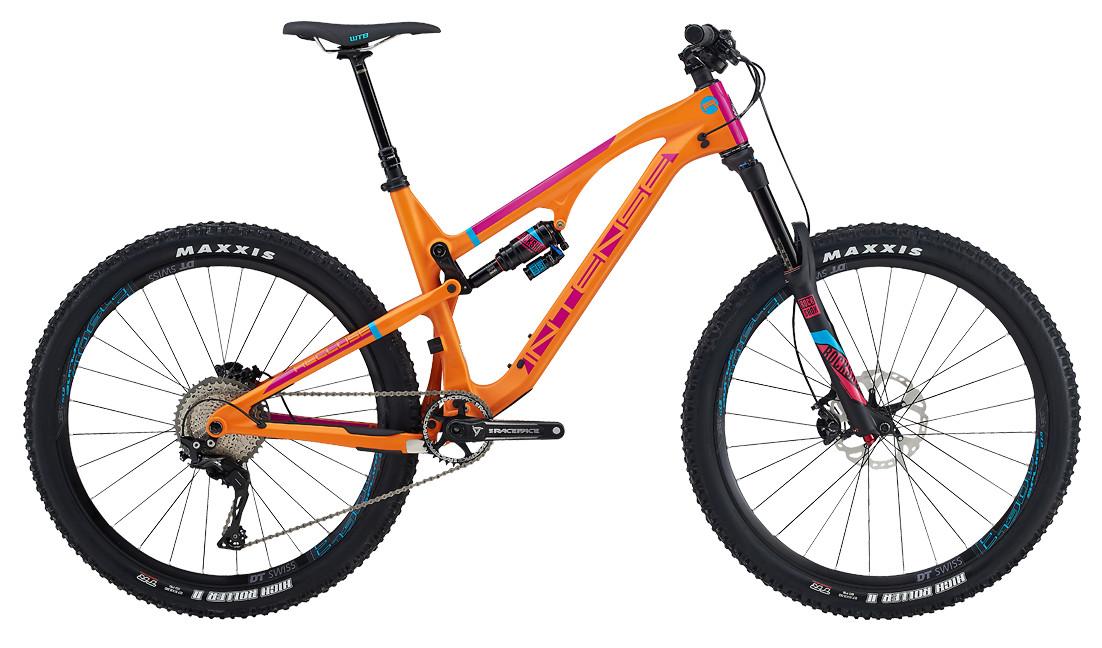 recluse-expert-orange-side