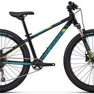 2018 Rocky Mountain Vertex 24 Bike