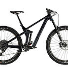 2019 Canyon Strive CF 8.0 Bike