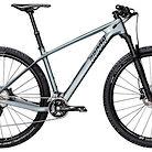 2019 Radon Jealous 7.0 Bike